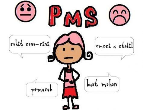 Lebih Dekat dengan PMS