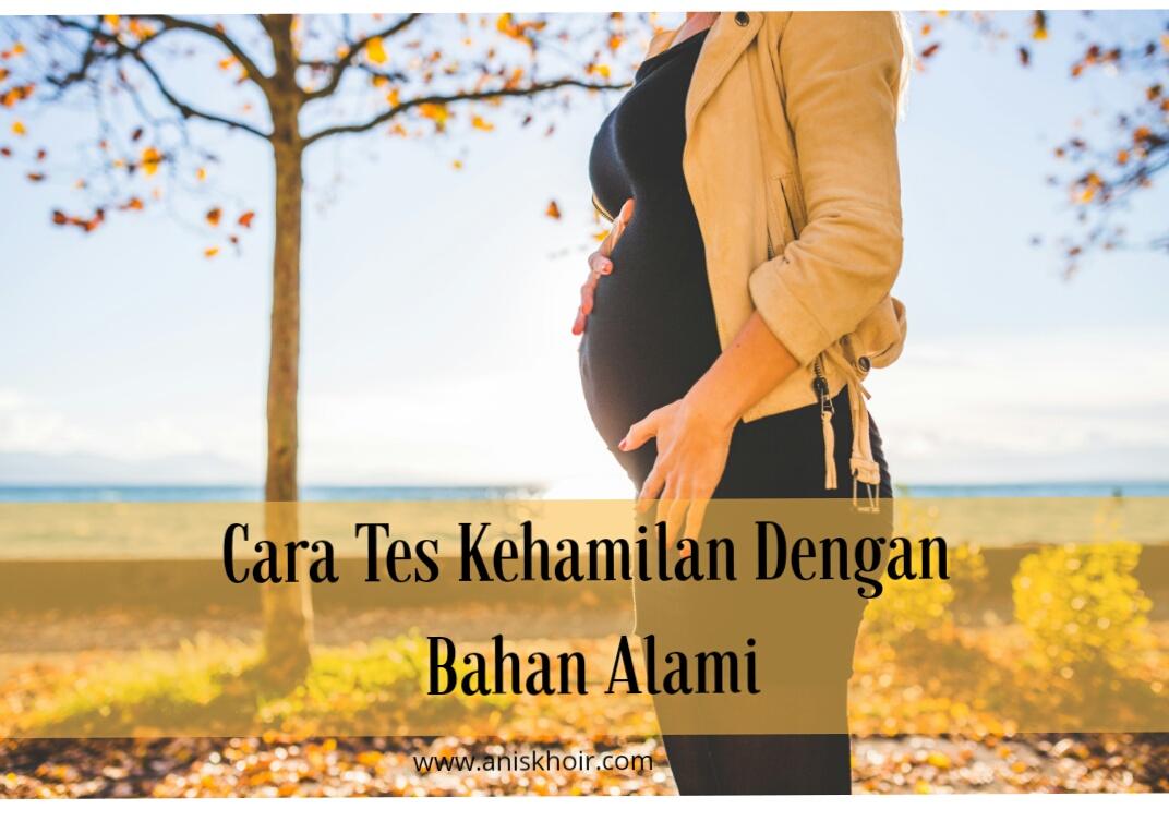 cara tes kehamilan