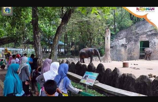 Liburan di Kebun Binatang Ragunan