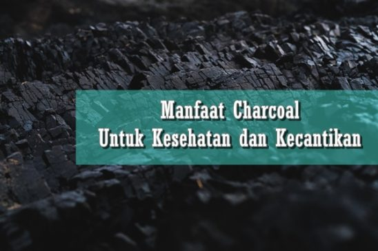 manfaat charcoal